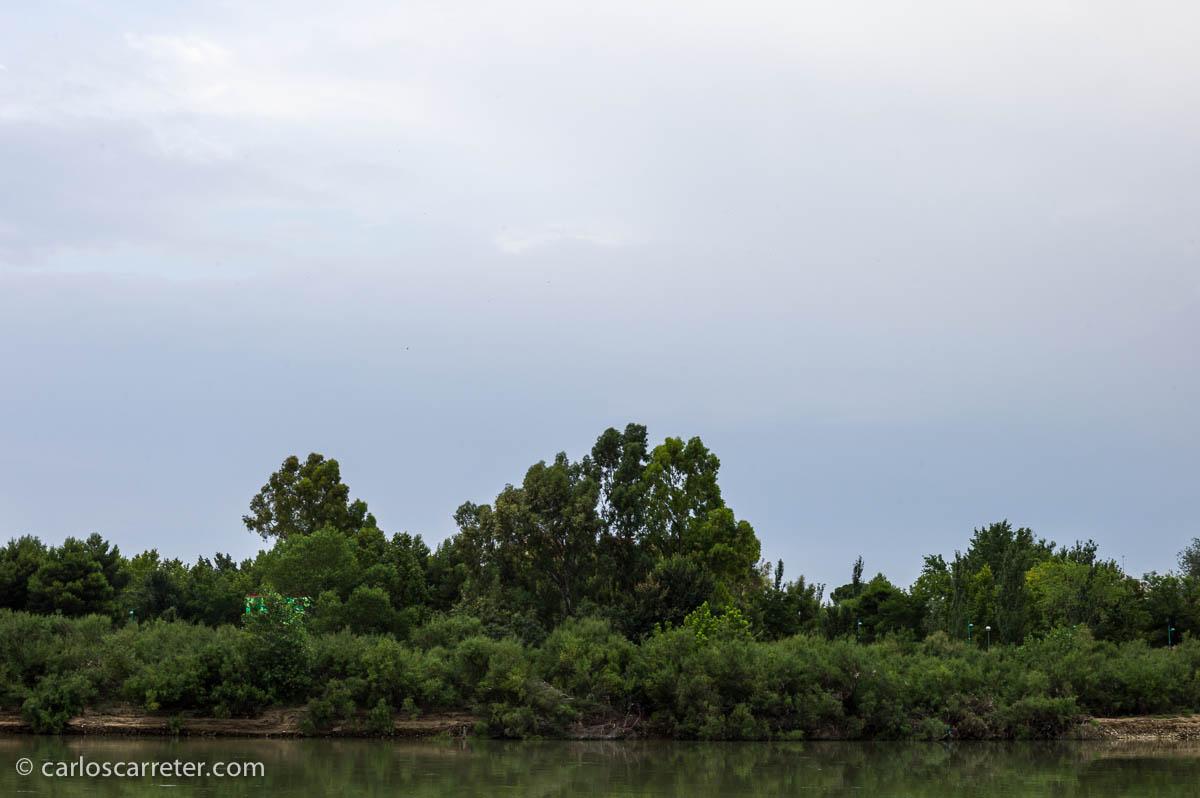 Riberas del río Ebro