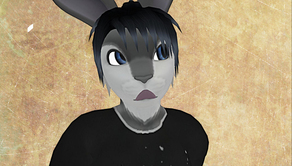 BunnyBlog7