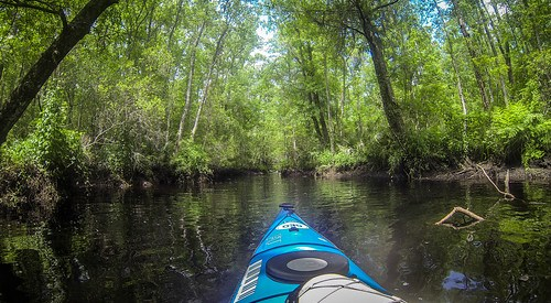 New River Paddling-88