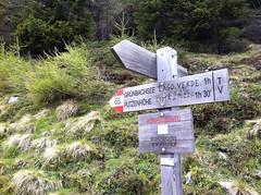 Wegweiser Grünbachsee