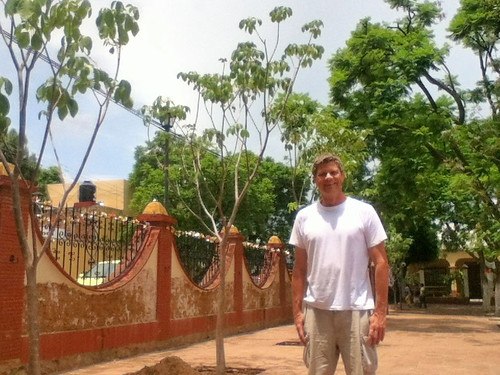 Checking out the new maquil trees in Templo Santo Tomás Xochimilco @ Oaxaca 07.2013