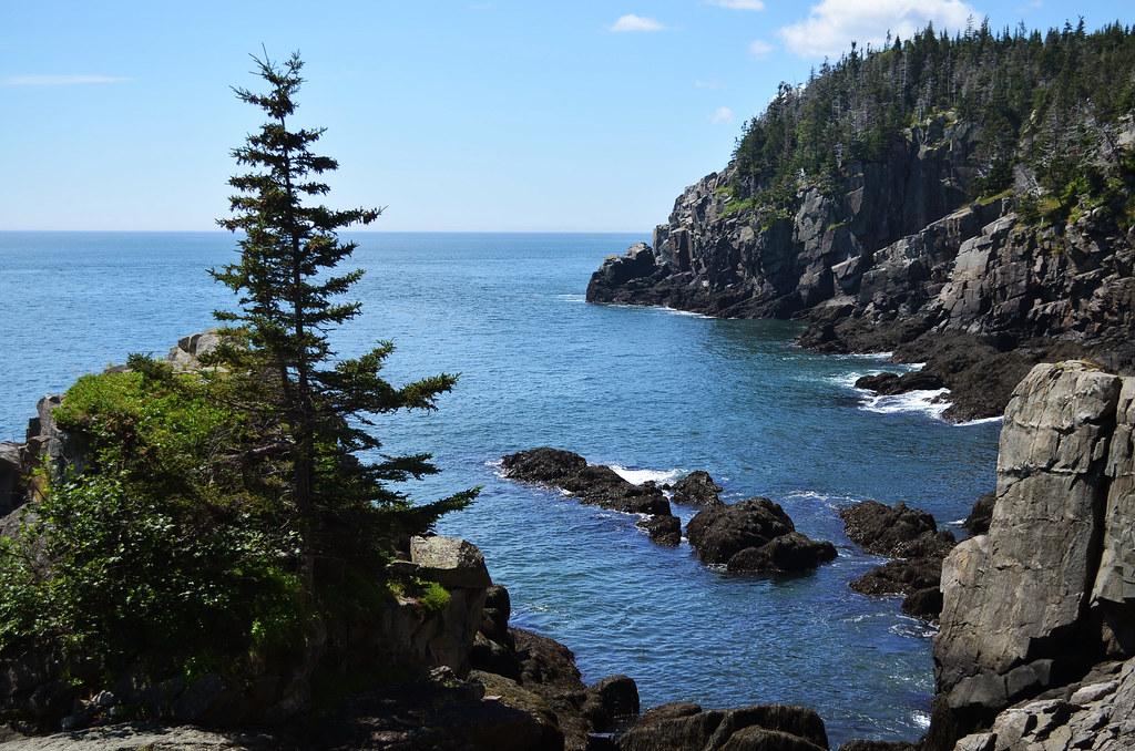 bold coast