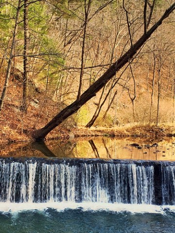 GooseCreek Mill Dam