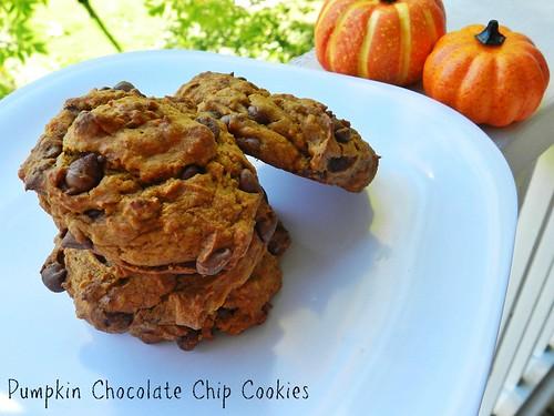 Pumpkin Choc Chip Cookies (3)