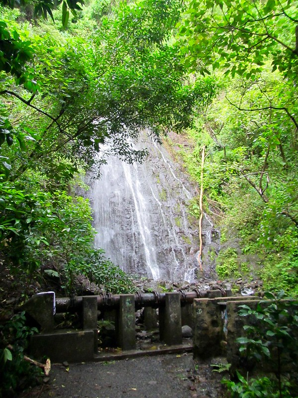 Picture from Hamama Falls