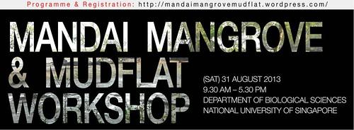 MMM Workshop banner