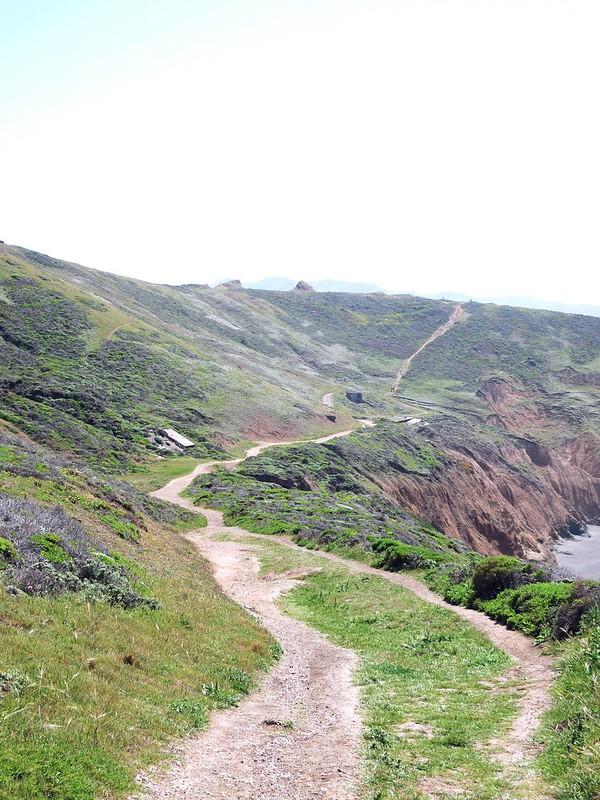 Green path1