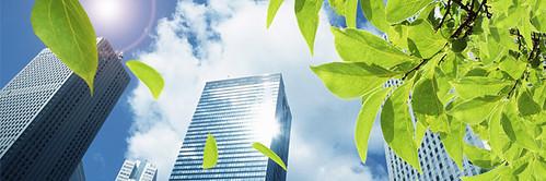 IBRID, Diagnóstico Green de Proyectos Sostenibles