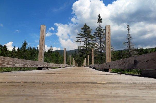 Zealand Trail Footbridge