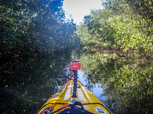 Indian River Paddling-51
