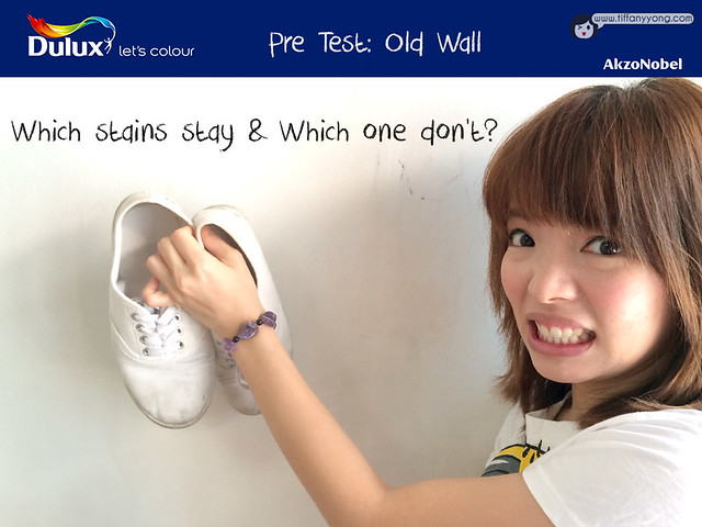 Dulux Wash and Wear PreTest