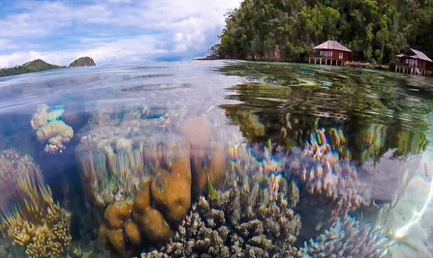 House reef. Bolilanga