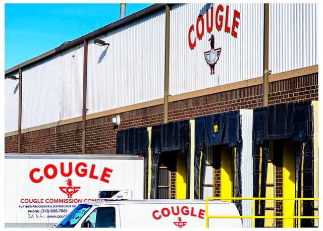Cougle Comission - Fulton Market