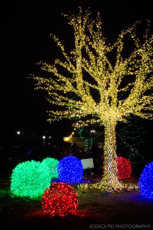 Christmas Wild Lights at St. Louis Zoo