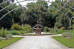 botanic gardens adelaide 3