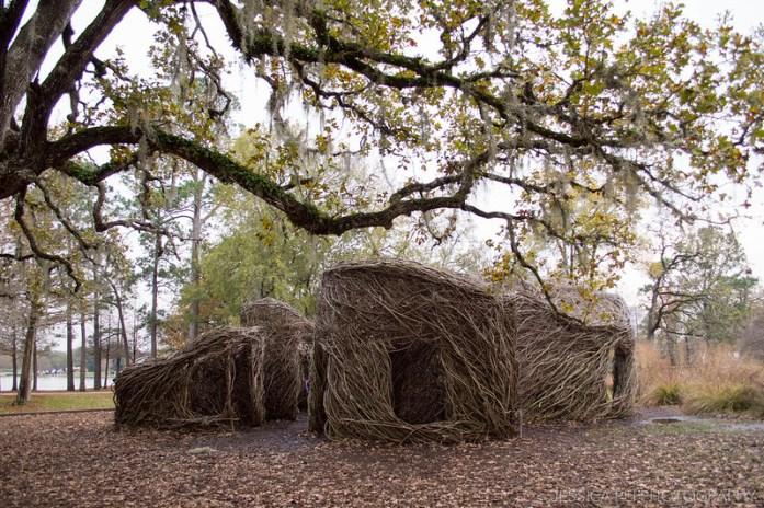Tree Shelter Art Hermann Park Houston