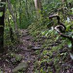 09 Viajefilos en Panama, Valle de Anton 33