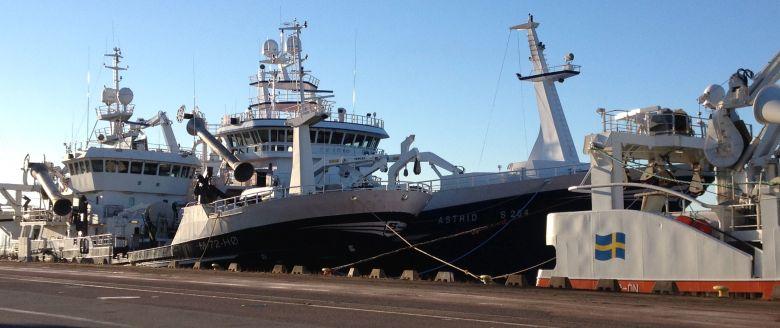 GG 505 Polar med S 264 Astrid utanför och GG 204 Tor-ön om fören.