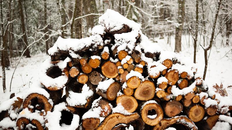 Snowy Maine Woodpile