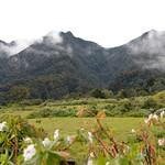 01 Viajfilos en Panama. Sendero Quetzal 19