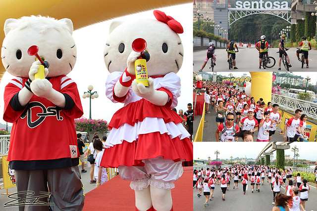 Hello Kitty Run 2014_2