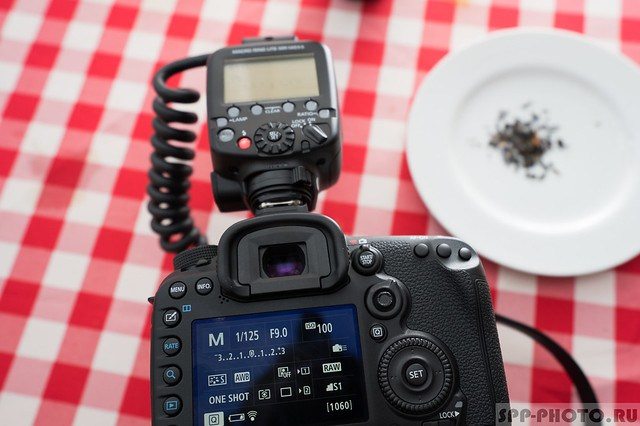 Canon Macro Ring Lite MR-14EX II: Первое знакомство