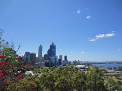 panoramic view from Kings Park 2