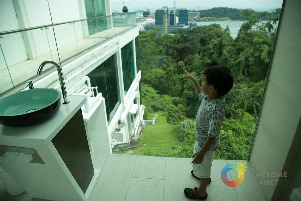 Singapore Cable Car Sentosa -70.jpg