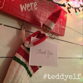 Teddy Says Thank You
