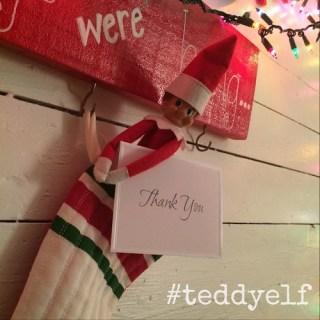 Teddy Says Thank You