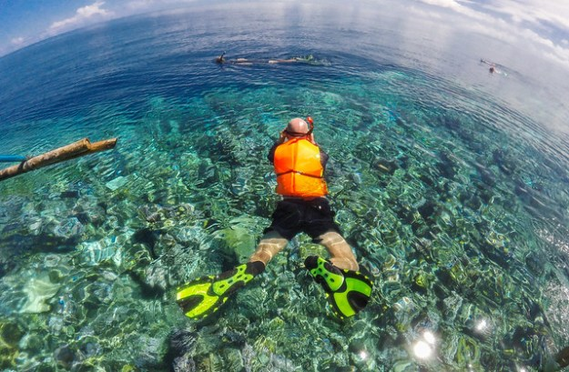 Swimming into a new world. Togean Islands