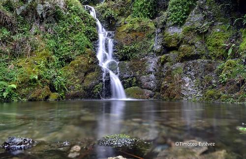 Resultado de imagen para parque Nacional Valle Nuevo rd
