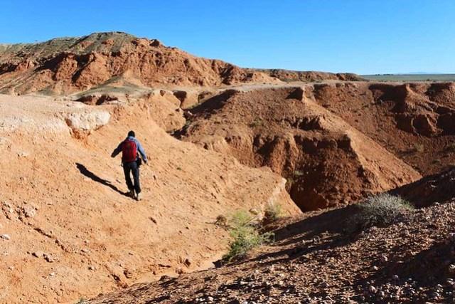 Gobi desert (16)