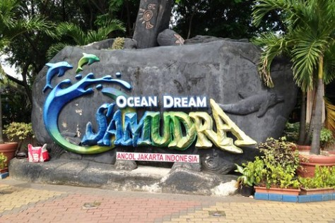 Welcome to Ocean Dream Samudra