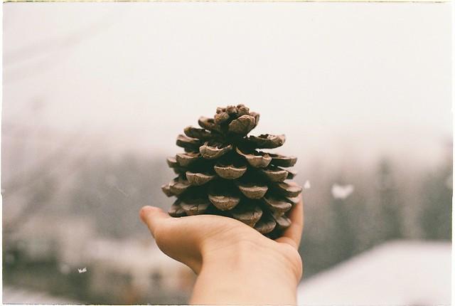 cone jewels