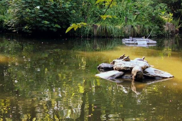 Minamishinike pond