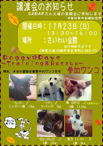 image141123-satooyakai-dd1
