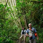 01 Viajfilos en Panama. Sendero Quetzal 44