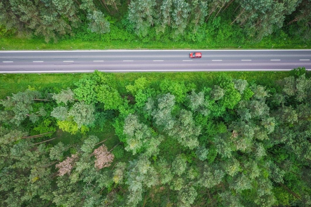 Imagen gratis de un coche rojo rodeado de un frondoso bosque
