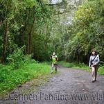 01 Viajfilos en Panama. Sendero Quetzal 07