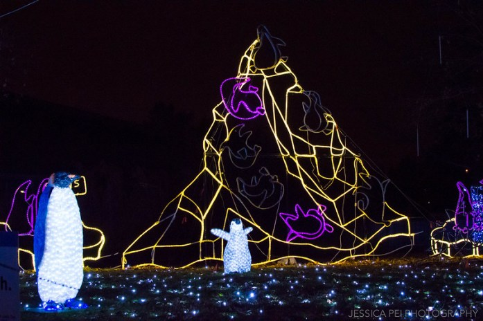Penguins Christmas Display at St. Louis Zoo Wild Lights