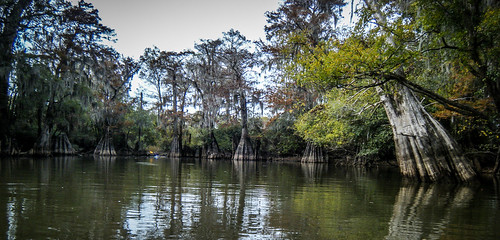Savannah River from Stokes Bluff with LCU Nov 7, 2014, 4-18 PM Nov 8, 2014, 2-057
