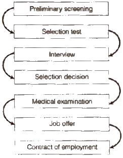 ncert class 12 business studies Chapter 6-Staffing solution