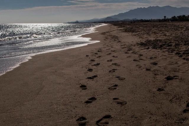 Seremos como pisadas en la arena / We will be like footprints in the sand