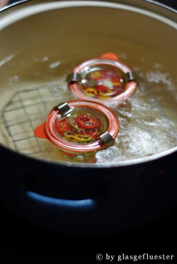 eingelegte Peperoni by Glasgeflüster 2 klein