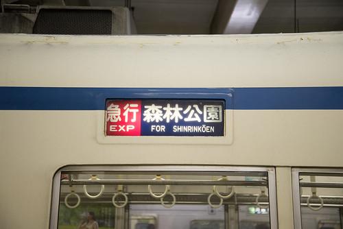 DSC_6536