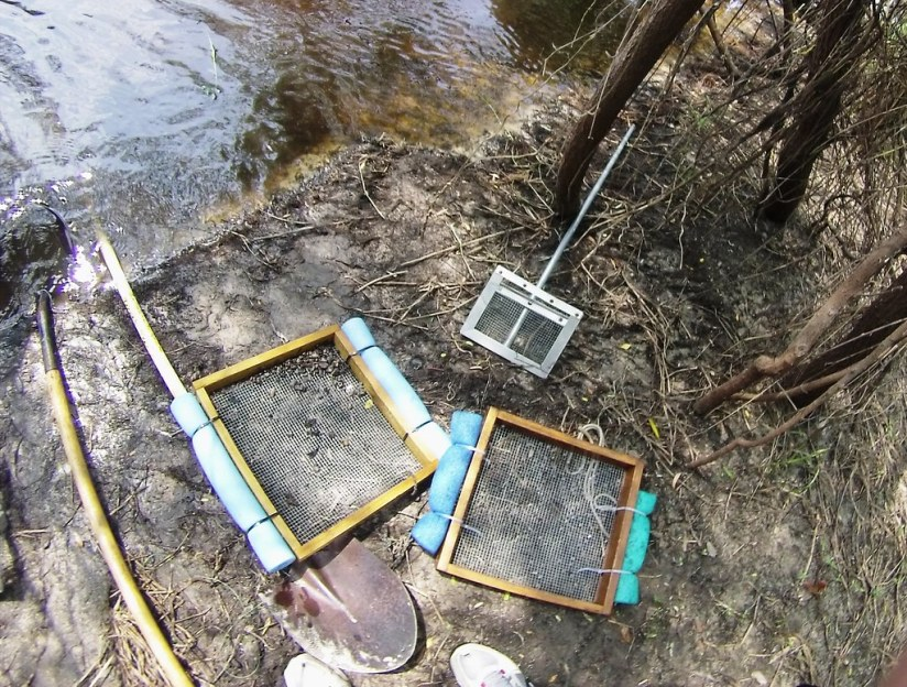 Tools - Fossil Hunting in the Peace River, Fla., with Mark Renz of Fossil Expeditions, March 2015