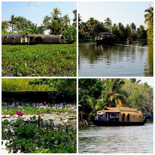 Backwaters Kerala Alappuzha