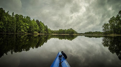 Lake Marion Plantation Islands-004