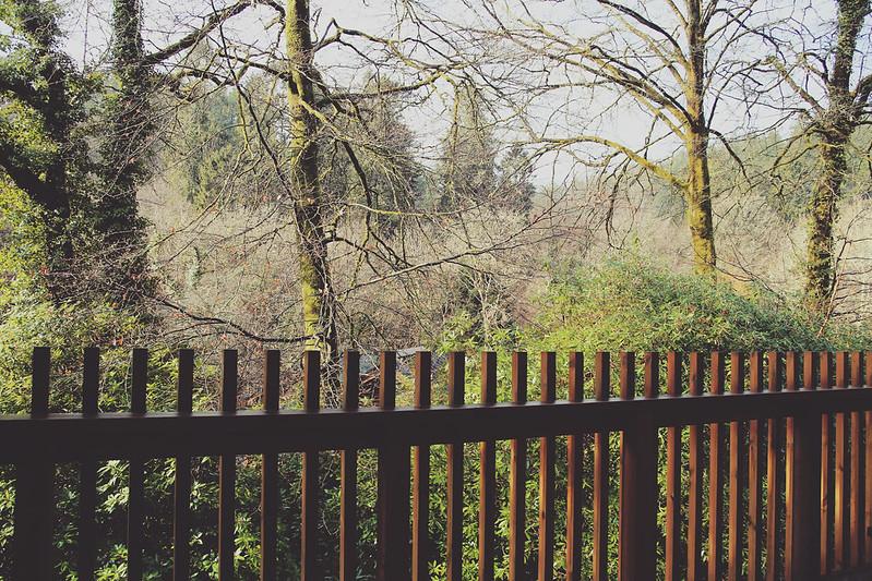Forest Holidays balcony
